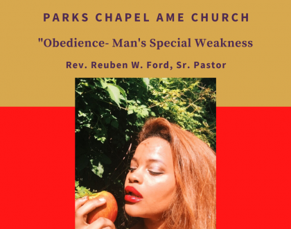 Obedience - Man's Special Weakness