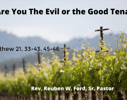 Are You The Evil or the Good Tenant?