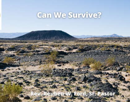 Can We Survive?